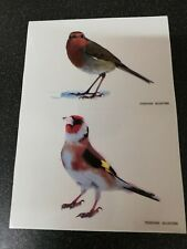 Robin & Goldfinch Clear Stickers