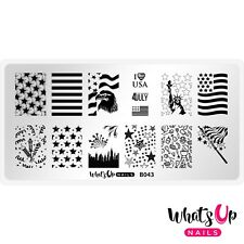 B043 Stars and Stripes Stamping Plate For Stamped Nail Art Design