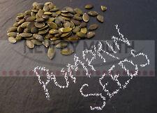 Pumpkin Seeds 1Kg Grade AA Ready to Eat!