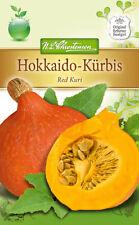 Hokkaido-calabaza 'Red kuri' - cilindrica maxima, aprox. 3 - 5 semillas 4286