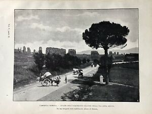 Stampa antica - Campagna Romana - 1902 da una foto Alinari