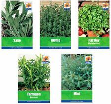 5 PACKS of COOKING HERB SEEDS - Mint, Parsley, Sage, Tarragon & Thyme