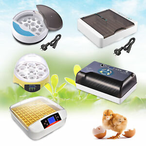 Digital Egg Incubator Automatic LED Hatch Turning Chicken Duck Bird Eggs Poultry
