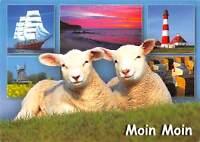 GG11873 Moin Moin Schiff Leuchtturm Muehle Strand, Sheeps Mill Lighthouse