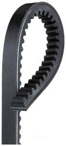 V-Belt   Gates   TR24489