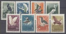 OISEAU Hongrie 8 val de 1959 ** BIRD VOGEL UCCELLO