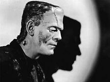 Impresión arte cartel vintage fotografía 1935 Frankensteins Monster nofl1490