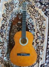 Acoustic guitar MP-06081