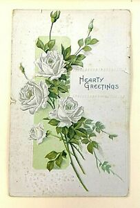 """GREETING: """"Hearty Greetings"""" EMBOSSED, White Roses  Antique 1917 PC 910A"""