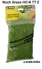 Noch 50210 Z N HO Static Grass 2.5mm Spring Green, 100g Big Bag *NEW $0 SHIPPING