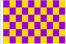 Purple And Yellow Check 5' x 3' Large Sleeved Flag