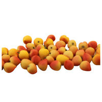 10pcs Dollhouse Miniature Model Simulation Fake Fruit Kitchen Decor Gift 1/12 Q3