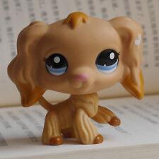 "LPS Littlest pet shop MINI 2"" FIGURE TOY blue eyes Cocker Spaniels Dog #1716"