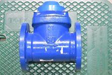Seametrics Wj 300 Cast Iron In Line Turbine Meter Water Flowmeter