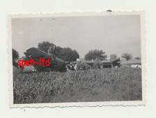 Original Foto / abgestürztes deutsches Flugzeug ..................( 1 )