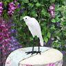 Outdoor Yard Art White Ergret Statues Bird Model Sculpture Lawn Garden Decor