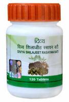 Baba Ramdev Patanjali Divya Shilajit / Shilajeet Rasayan Vati 40 gm Herbal