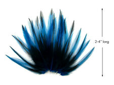 10 Pieces - Kingfisher Blue BLW Laced Short Rooster Cape Whiting Farms Feathers