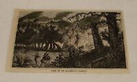 1876 magazine engraving ~ FIRE IN ALGERIAN FOREST