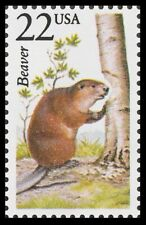 USA -1987- North American Wildlife Stamp - Canadian Beaver - Sc. #2316