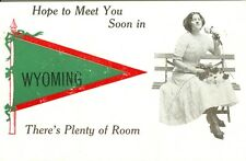 Wyoming IL Hope to Meet You Soon in Wyoming,There's Plenty of Room Pennant Greet