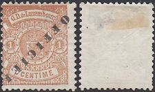 Luxembourg 1878 -Mint stamp without gum. Mi Service nr:  10II A. .(DE) MV-4793