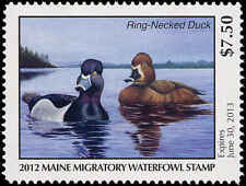 MAINE #29 2012 STATE DUCK RING NECKED DUCK by Janine Folsom