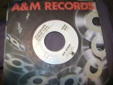 jan berry  a&M promo with jan berry /b-side hometown band   nm