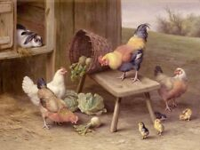 Home Wall Art Decor chickens and rabbits Oil Painting Printed On Canvas VI