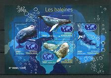 Togo 2015 MNH Whales 4v M/S Marine Animals Baleines Humpback Beluga Minke Whale