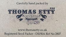 Nutley's Thomas Etty unusual heritage vegetable seeds Pumpkin Squash Small Sugar