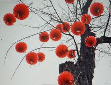 5 CHINESE 18cm RED PVC HONEYCOMB PALACE LANTERN WEDDING BIRTHDAY JAPANESE PARTY