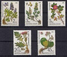 Russia - Soviet Union 1985 Mi. 5528-32 Protected medicinal plants   (83039