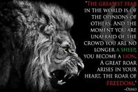 64433 Osho Quotes - Lion Inspirational Motivational Wall Print POSTER AU