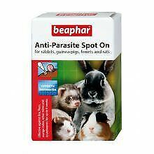 Beaphar Spot On Rabbit & Guinea Pig - 4pip - 571619