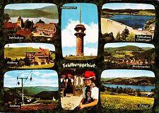 Feldberg / Feldberggebiet ,Ansichtskarte