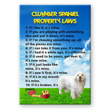 CLUMBER SPANIEL Property Laws FRIDGE MAGNET New DOG