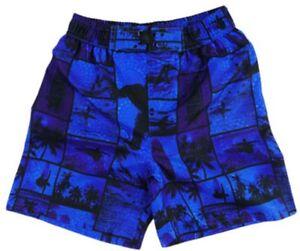 Size 3, 4, 5, 6 - Boys BoardShorts Blue Surfing Print Board shorts Swimwear