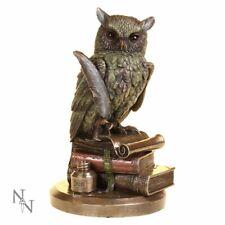 Ulula Owl Academic Owl Figure Cold Cast Bronze By Veronese.Great.