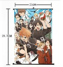 Hot Japan Anime Haikyuu!! Shoyo Hinata Shonen Home Decor Poster Wall Scroll 05