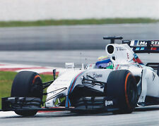 FELIPE MASSA SIGNED AUTOGRAPHED F1 RACING 2014 WILLIAMS 8X10 PHOTO  PROOF