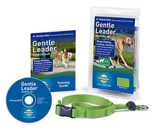 PetSafe Gentle Leader Head Collar Large Apple