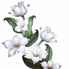 Jasmine & Vanilla Perfume. Rollerball 5ml Essential Perfume Oil