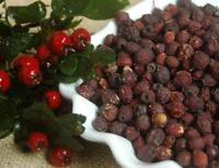 Krauterino24 - Weißdornbeeren ganz Weißdornfrüchte - 250g