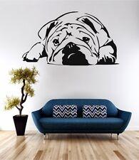 Bulldog Animal Dog Wall Art Sticker Quote Decal Vinyl Transfer