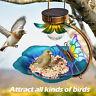 Solar Light Wild Bird Bath Feeder Bowl Garden Light LED Patio Bird Feeding