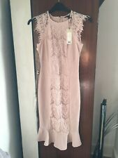 Lipsy Dress Size 10 Nude Lace Front Pannel Bnwt