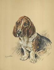 New listing Basset Hound - Vintage Dog Art Print - 1938 KF Barker