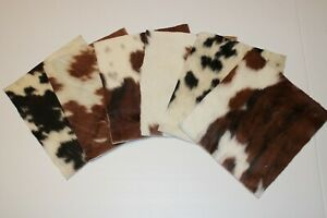 """Assorted Hair-on Cowhide Pre Cut Pieces by Dozen   11""""x9"""" inch Precuts Sheets"""