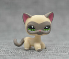 Grey eyeshade Short Hair Kitty Cat LITTLEST PET SHOP LPS Action Figure #1116